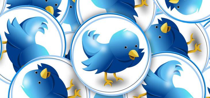 Consejos para conseguir seguidores en Twitter